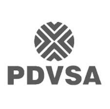 logo pdvsa